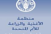 منظمة الأمم المتحدة للاغذية والزراعة ستدعم المغرب في التحضير لمؤتمر المناخ ( كوب 22)