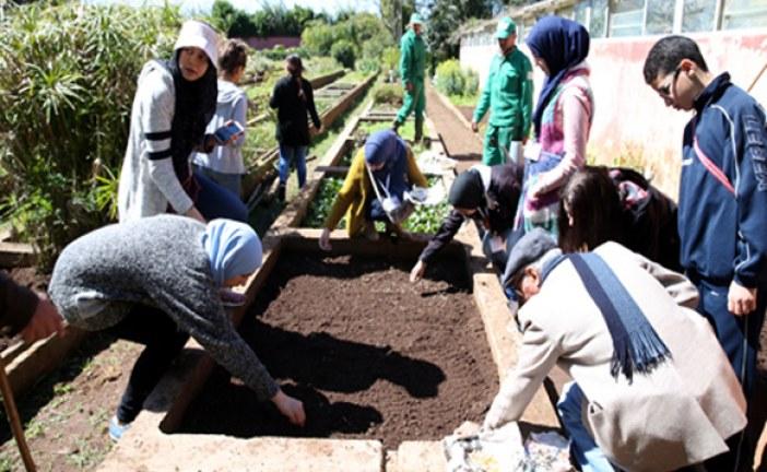 الحدائق العجيبة ببولقنادل: تلاميذ يكتسبون تقنيات البستنة في أول أسابيع فصل الربيع