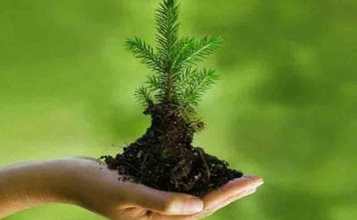 بلاغ صحفي : الاحتفال باليوم العالمي للبيئة 2017 بمراكش