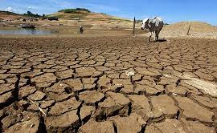 لقاء إقليمي بعمان لبحث بلورة استراتيجية لتعزيز العمل المناخي العربي