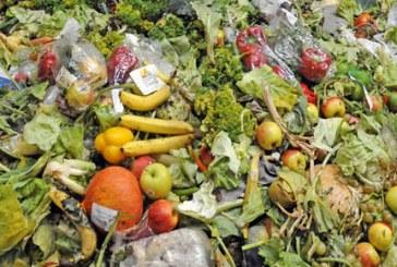 الدول الأوروبية تهدر عشرات ملايين الأطنان من الطعام سنويا