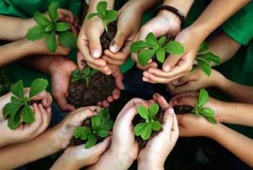 التربية البيئية ودورها في حل قضايا البيئة