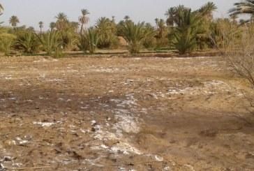 """المنظمة الألمانية العالمية """"جرمان واتش"""": متوسط الخسائر الاقتصادية المتعلقة بالتدهور البيئي ومخاطر التغيرات المناخية في المغرب بلغت السنة الماضية ، حوالي مليار و300 مليون درهم."""