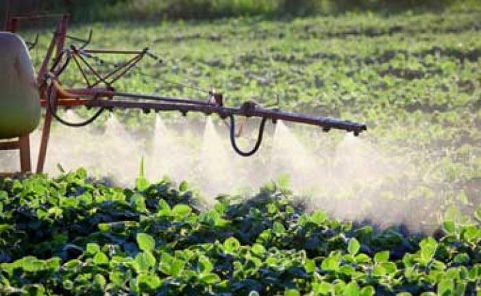 بحث عالمي شامل: المبيدات الكيميائية الأكثر انتشارا تهدد إنتاج الغذاء في العالم