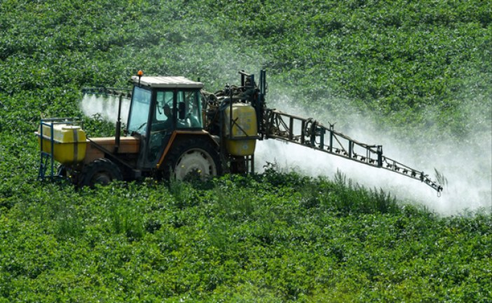 """الأردن .. إطلاق مبادرة تدوير المخلفات الزراعية لتصنيع السماد العضوي """"الكمبوست"""" في وادي الأردن"""