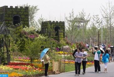 بكين تخطط لاستكمال مشروع تشجير حوالي 16667 هكتارا مع نهاية 2019