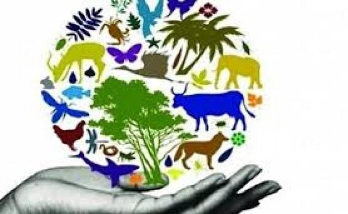 تخليد اليوم العالمي للتنوع البيولوجي وتوقيع اتفاقية شراكة مع جامعة محمد الخامس