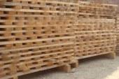 إجمالي إنتاج الخشب من مجموع الأصناف الغابوية بالبوسنة يسجل انخفاضا ب1,14 في المائة خلال الربع الثالث من سنة 2019