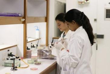 خطوات متكاملة حول العالم لمواجهة فيروس كورونا (كوفيد-19)