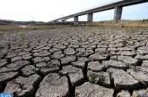 اليوم العالمي لمكافحة التصحر والجفاف.. المغرب يبرز الموقف الإفريقي المتعلق بالتدبير المستدام للأراضي