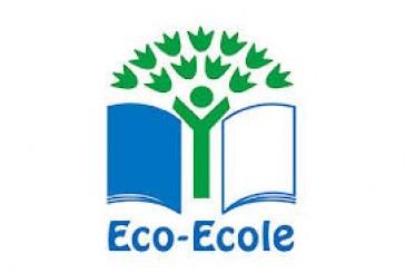 برنامج المدارس الإيكولوجية.. اداة اساسية لتنمية الوعي البيئي داخل المجتمع.