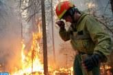 الجزائر.. تسجيل 43 حريقا عبر 22 ولاية في ظرف يوم واحد
