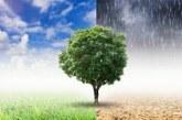 بلاغ صحفي:  مركز الكفاءات للتغير المناخييعزز دعمه لسياسات مكافحة التغير المناخي بالمغرب ولإفريقيا