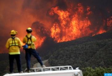 مصرع 15 شخصا على الأقل جراء استمرار حرائق الغابات بالولايات المتحدة