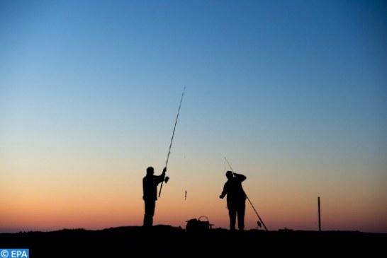 التوقيع على أكثر من 300 من العلماء والخبراء إعلانا دعوا فيه الاتحاد الأوروبي إلى إنهاء الصيد…