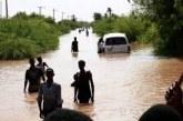 السودان :  الفيضانات الأخيرة  تؤثر على نحو ثلث الأراضي المزروعة