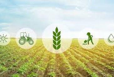 Le monde a besoin d'un organe scientifique de type GIEC pour guider la transformation des systèmes alimentaires, déclare un groupe de réflexion de premier plan