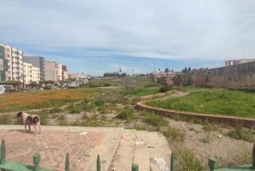حدائق   يتم وأدها بعد ان تهدر فيها أموال عمومية باهظة
