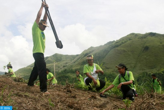الإكوادور .. إطلاق مبادرة غرس مائة ألف شجرة بأربع أقاليم بمنطقة الأمازون