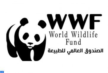 """الصندوق العالمي للطبيعة يدعو إلى اتخاذ إجراءات عاجلة لضمان """"مستقبل مستدام"""""""