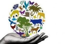أبيكورب تخصص مليار دولار لدعم المشروعات الخضراء في الشرق الأوسط