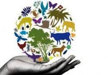 المهام الثلاثة عشر التي تقع على عاتق الدول بشأن حماية التنوع البيولوجي وحقوق الإنسان