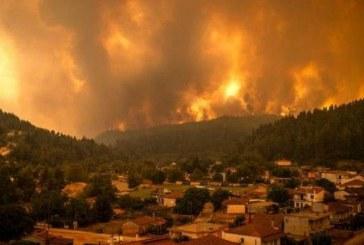 """معظم حرائق الغابات التي اجتاحت شمال الجزائر منذ أسبوع """"أضحت تحت السيطرة"""""""