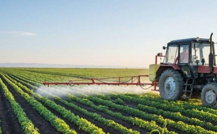 الفاو ومنظمة التعاون الاقتصادي والتنمية تدعوان الى الاستثمار المسؤول في الزراعة