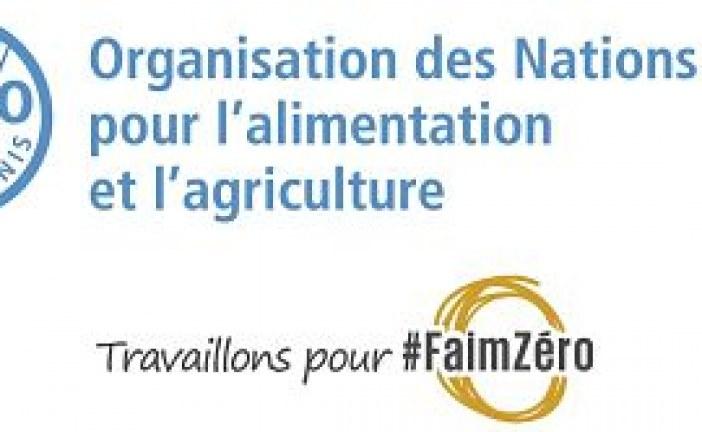 وزراء في منطقة الشرق الأدنى وشمال أفريقيا يلتزمون بتعزيز التعاون في مجال الأغذية والزراعة