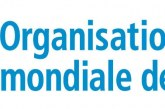 Premier séminaire de formation à la gestion des urgences sanitaires et pandémies au profit des futurs médecinsau Maroc