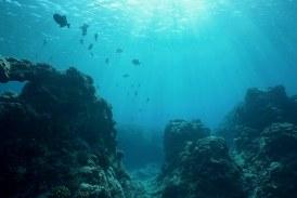 كوريا الجنوبية .. الدورة الثانية للمنتدى الدولي للمحيطات تبحث سبل تعزيز الصناعة البحرية